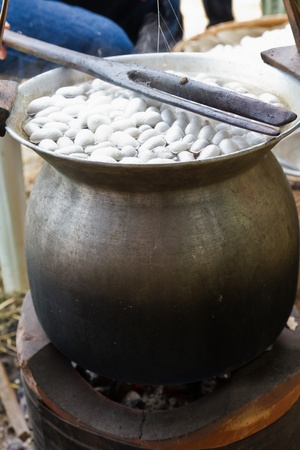Boiling cocoon in a pot to prepare a cocoon silk. photo