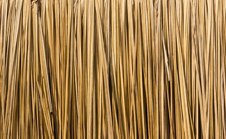 Close up straw background. Texture of straw Stockfoto