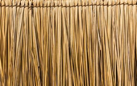 Close up straw background. Texture of straw photo