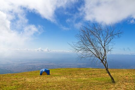 Tent camping in a campground  on mountain photo