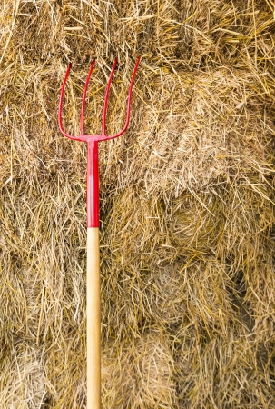 golden shovel: Pitchfork sit in a pile of Straw   stacked awaiting the workers