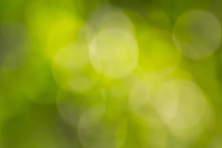 Blurred lights green bokeh abstract light background photo