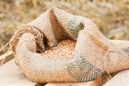 distillers: Compound Feed in sacks fodder for the animals