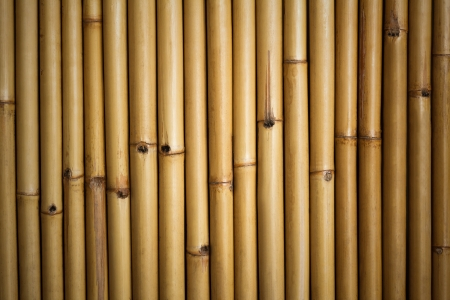 Bamboo background   Thai bamboo wall background photo
