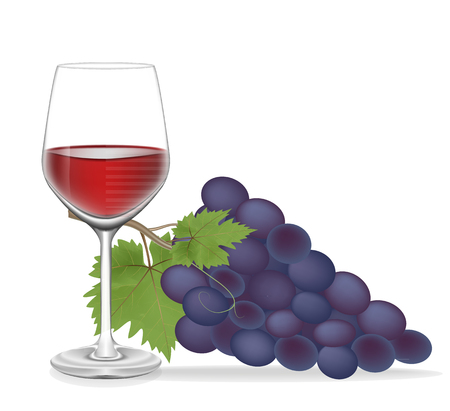 Grape and Glass wine isolated on white blackground,Vector illustration Vector