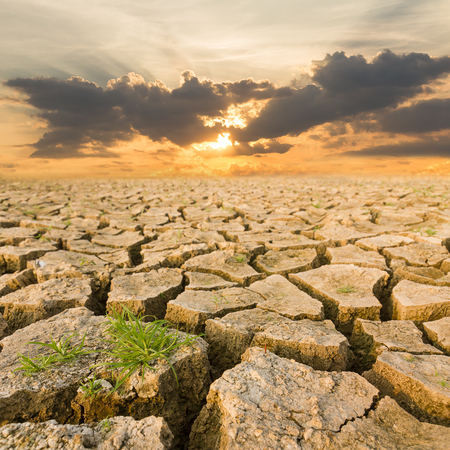 soil erosion: Global warming concept. drought land under the evening sunset Stock Photo