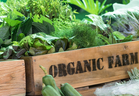 Fresh organic produce from farm in wooden box Stockfoto
