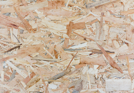 oriented: Close up texture of oriented strand board - OSB, Wood board made from piece of wood