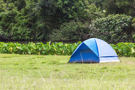 the topical: Blue tourist tent in topical forest camp, Thailand