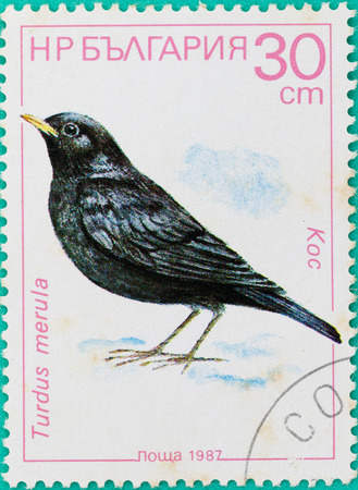 turdus: SARABURI, THAILAND-JUNE 01,2017: Postage stamps had been printed in Russian Federation shows image of Turdus merula Bird, circa 1987 Editorial