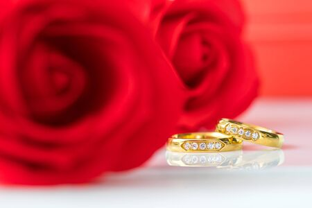 Red plastic fake roses on white background, Wedding concept with roses and gold rings