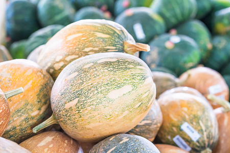 Bunch of orange pumpkins for sale in organic farm for sale to be used as fall decorations Archivio Fotografico