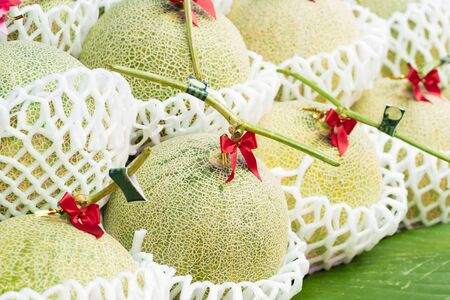 Fresh melons or green melons or cantaloupe melons for sale in market 版權商用圖片