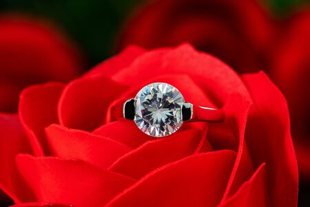 Closeup Diamond gem wedding rings  on red roses leaves Stock Photo