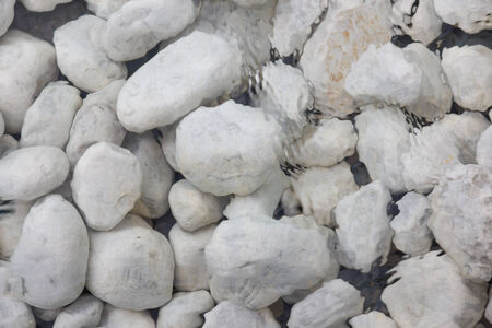shallow water: A picture of a bunch of white stones in shallow water Stock Photo