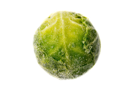 Picture of a single frozen green sprout