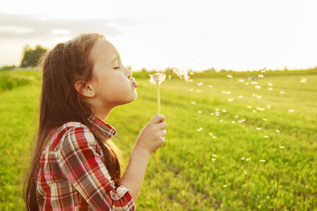 blow: little girl blowing on the dandelion Stock Photo