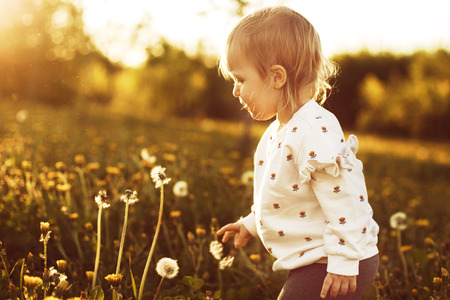 little happy girl in a field with a dandelion in hand Stock Photo