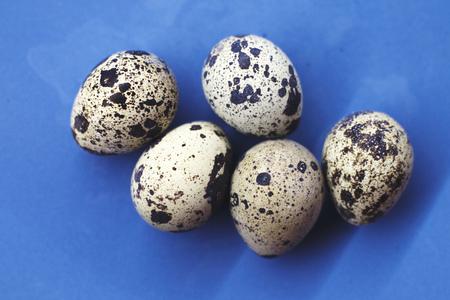 raw quail eggs on a plate. quail eggs on a blue background