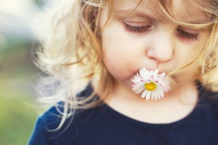 girl with a daisy flower in her mouth on a green background close. lips with flower on  grass background. portrait of a little girl Stock Photo