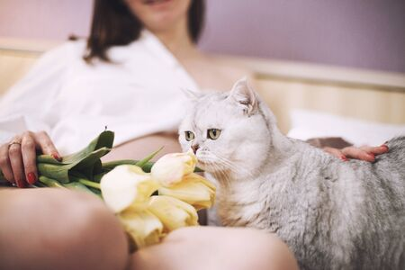 pregnant woman with a cat. cat is smelling the flowers. Scottish straight cat
