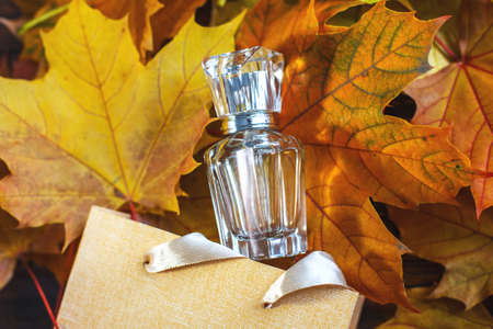 A glass bottle of female perfume with gift bag laid on autumn yellow leaves on a wooden background. Natural perfumery. Autumn season. Archivio Fotografico
