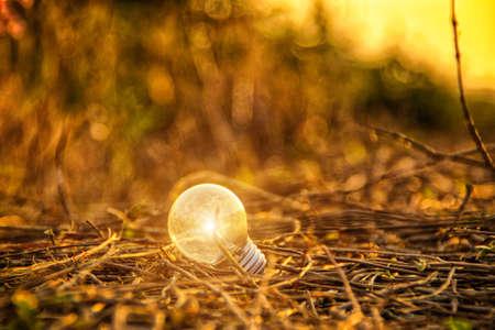 incandescent: The incandescent light bulb Stock Photo