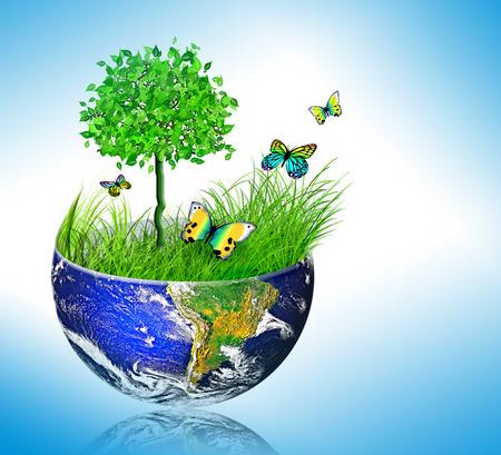 Concept de l'énergie de l'environnement, le vélo dans la nature, protection de la nature
