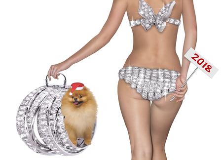 Christmas concept with a girl and a small dog Pomeranian Pomeranian.