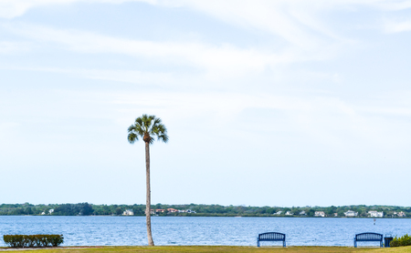 The view of Tampa Bay from the Veterans Memorial Park in Oldsmar, Florida. Imagens - 79540213