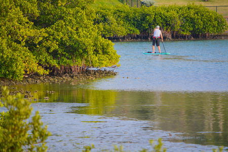 winter escape: A paddle boarder in the mangroves of the inland waterway in Indian Rocks Beach, Florida USA Stock Photo