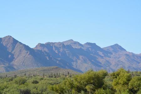 A view in Tonto National Forest