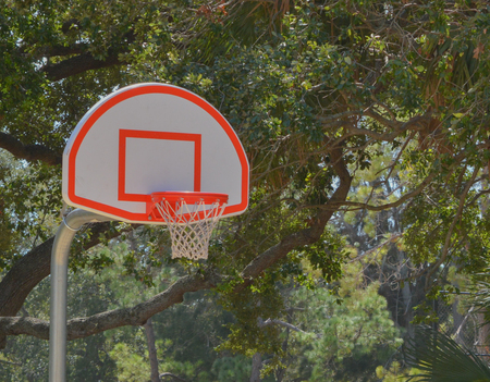 Basketball hoop on outside court in Largo Florida