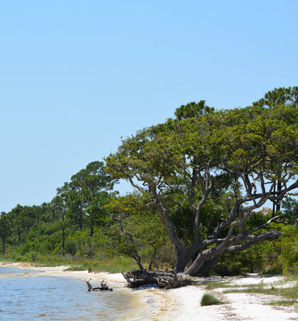 The coast of Gulf Breeze in Santa Rosa County Florida on the Gulf of Mexico, USA