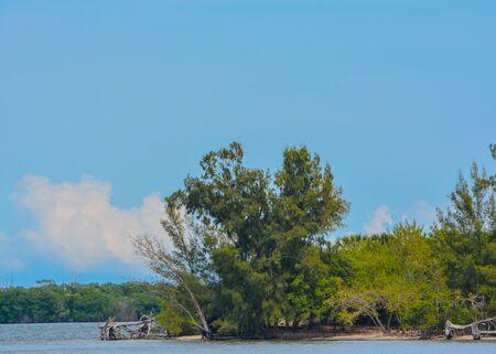 Island on Indian River Lagoon at Vero Beach, Indian River County, Florida USA 版權商用圖片