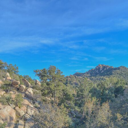 The wilderness of Tonto National Forest, Gila County, Arizona, USA