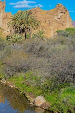 A Stream running through Boyce Thompson Arboretum State Park in Superior, Arizona USA