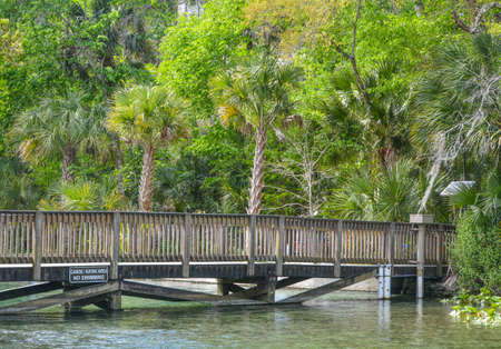 The walking bridge over the emerald color of the Wekiwa River in Wekiwa Springs State Park, Apopka, Seminole County, Florida