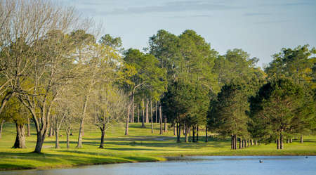 Peaceful view of the lake, green grass and trees of this Golf Course in Georgia