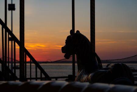 Carousel horse in the sundown light