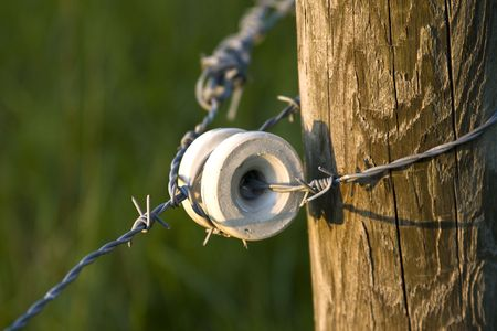 cattle wire wires: A part of an electric barbed wire fence surrounding a field in the country.