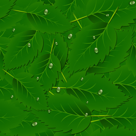 Vector seamless pattern background with green leaves and dew drops.