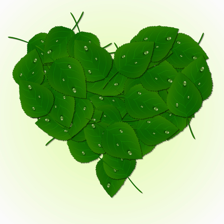 Vector heart made of green leaves and dew drops.