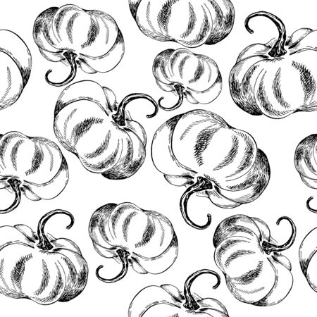 seamless pumpkin vector outline ink hand drawn black and white Çizim