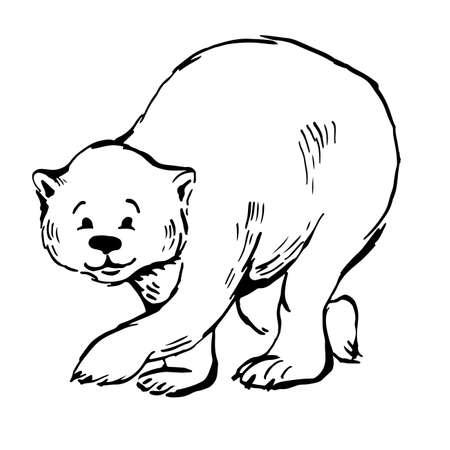 polar bear walks. ink vector sketch  イラスト・ベクター素材