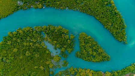 aerial view of the mangrove swamps , city of Dar es Salaam