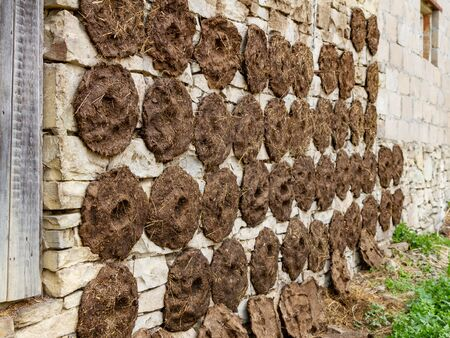 Dung, round-shaped dung cakes were stuck on the wall of the building to dry. Preparation of fuel for the winter in the mountains of the Caucasus. Biofuel, waste-free technology. Drying dung on a summer day Archivio Fotografico