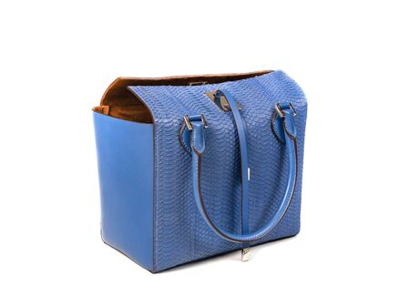 Blue women bag made of python skin with handles and leather straps, right side view. Minimalistic design. Isolate Banco de Imagens
