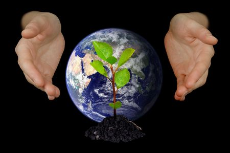 Hands protecting a young tree and globe of planet Earth photo