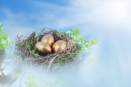 Birds nest with golden eggs in fog against bright blue sky. Stock Photo